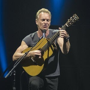 Sting-feature